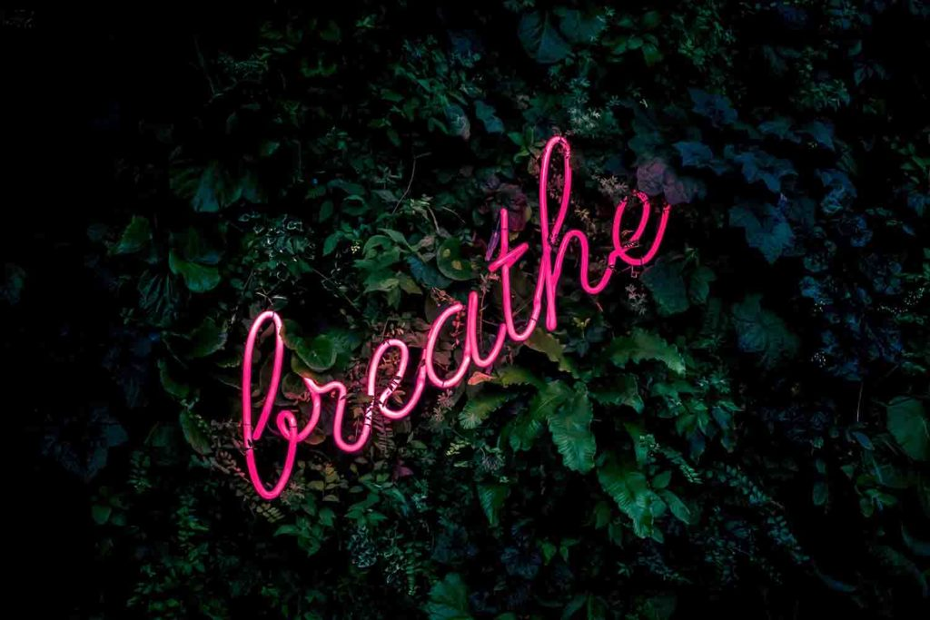"""una siepe con una scritta neon """"breathe"""""""