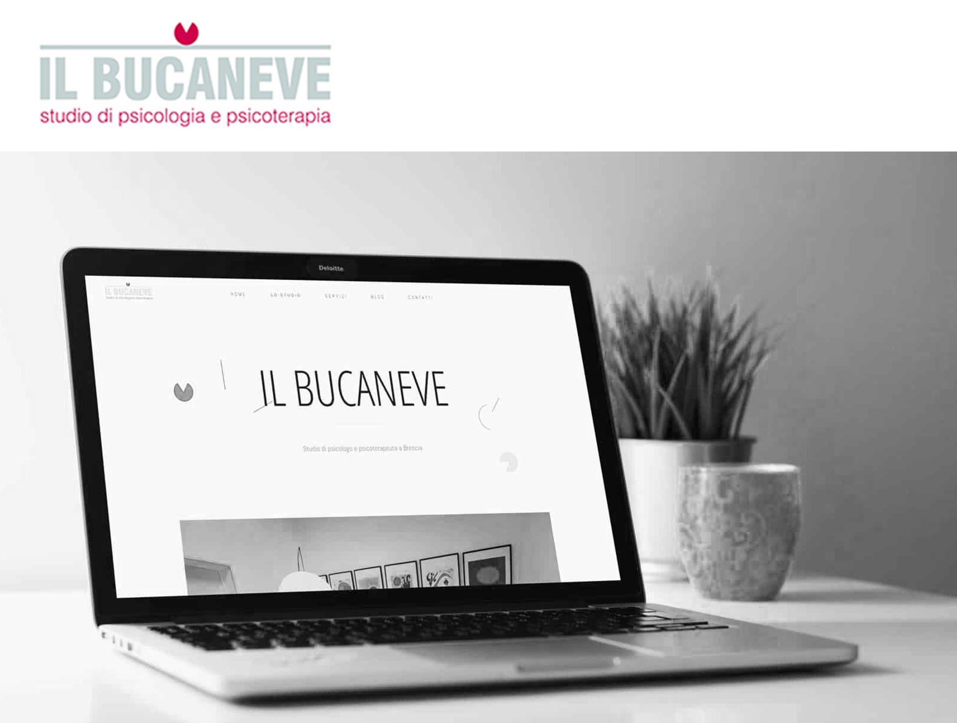 IL BUCANEVE